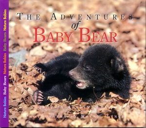 Adventures of Baby Bear